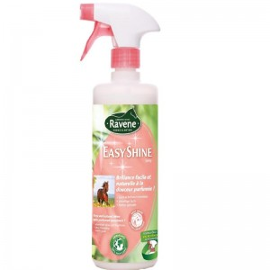 Ravene Easy Shine Spray 750ml