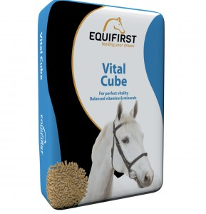 EquiFirst Vital Cube 20 kg