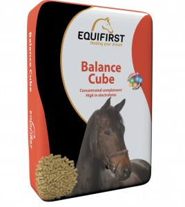 EquiFirst Balance Cube 20 kg