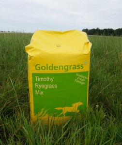 GoldenGrass Timothy-Ryegrass Mix 20kg